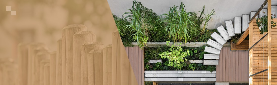 The garden where ideas arise